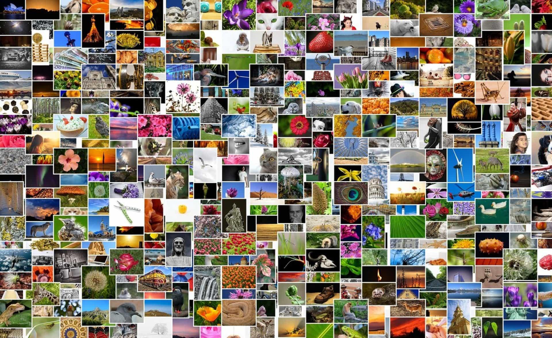 Darmowa grafika nafanpage'a istronę www